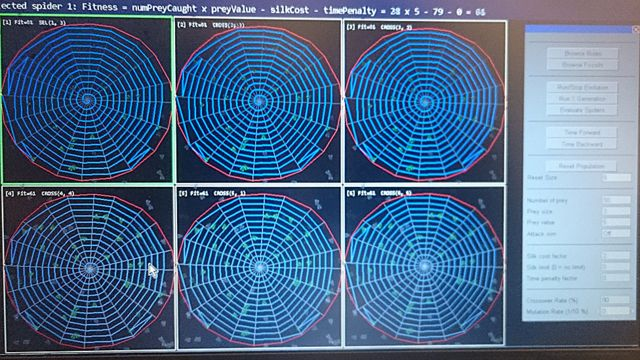 Análisis de telarañas