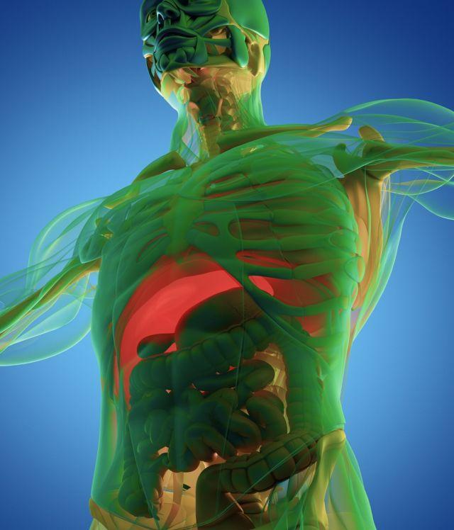 3d-изображение человека
