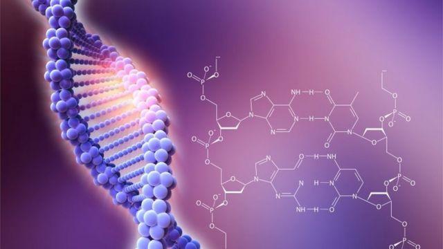 CRISPR, düzenli aralıklı kısa palindromik tekrar kümeleri anlamına geliyor