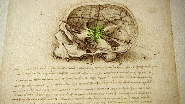 Crânio desenhado por Leonardo da Vinci