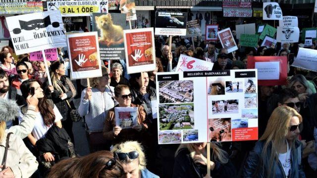 2018'de düzenlenen hayvan haklarının korunmasına yönelik protesto gösterisi