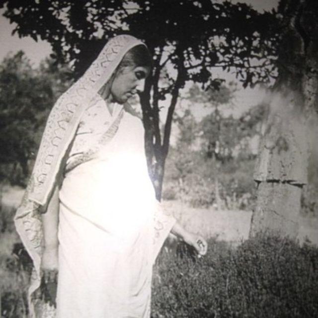 Dorothy Bonarjee in a sari