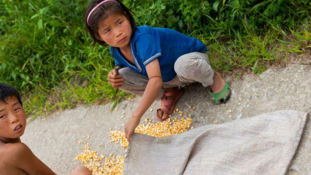 Children picking corn in the street.