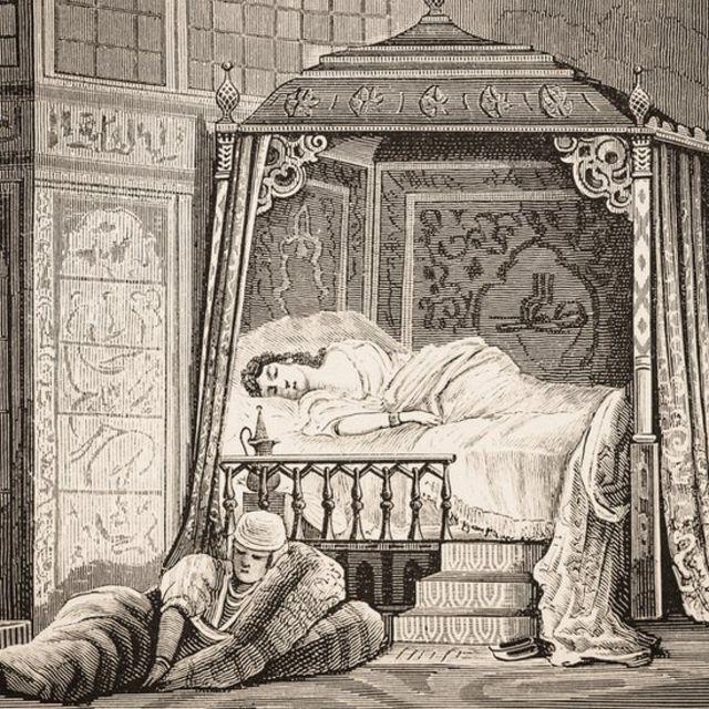 Ilustração da mulher de um sultão