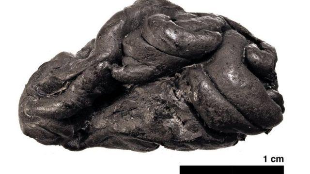 દક્ષિણ ડૅન્માર્કના સિલ્થોમમાંથી મળેલો વૃક્ષના ગુંદર જેવા પદાર્થનો 5,700 વર્ષ પુરાણો ગઠ્ઠો.