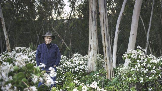 Richard Louv em um bosque