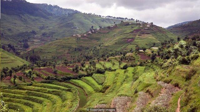 盧旺達過去有成功的防疫經驗