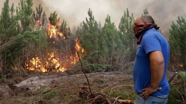 A member of the public helpjng with the fire fighting looks at a forest fire in Gaeiras, Marinha Grande