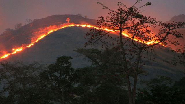 Slash and burn fire in Ghana of West Africa