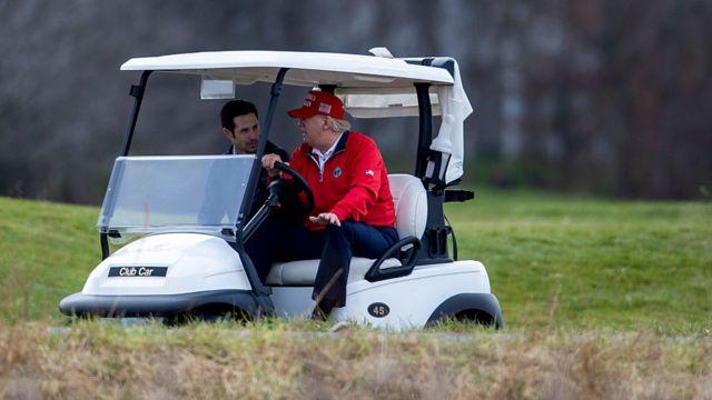 Trump in a field of gold