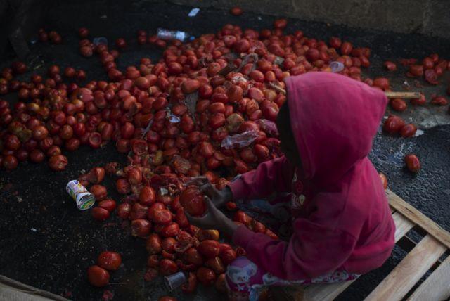 Criança busca tomates comestíveis em meio ao lixo no Rio de Janeiro em agosto de 2021