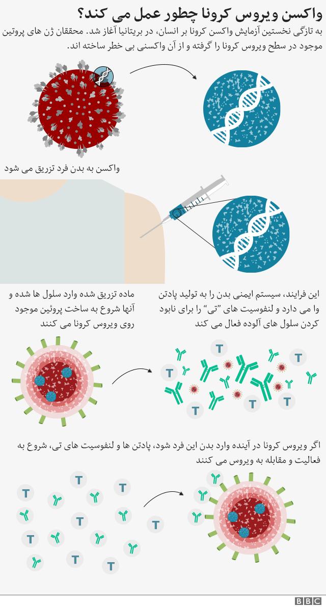 واکسن کرونا چطور عمل می کند؟