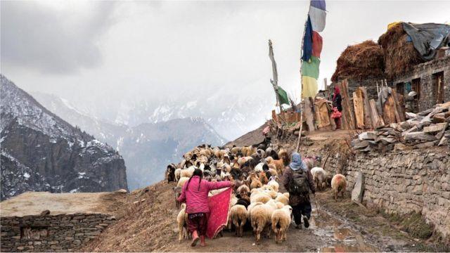 Estrada corta vilarejos em que o pastoreio é principal atividade econômica - e potencial obstáculo para os carros
