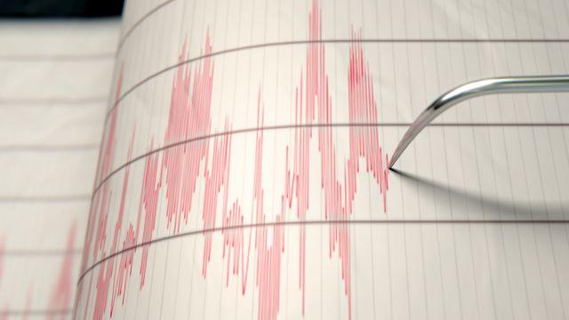 Ondas dibujadas por un sismógrafo