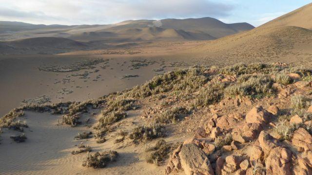 Desierto Sudamerica