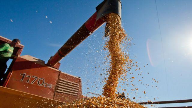 Exportadores de matéria-prima como o Brasil vão precisar de ajustes fiscais, diz FMI