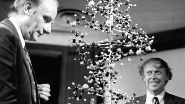 Francis Crick (izquierda) y James Watson.
