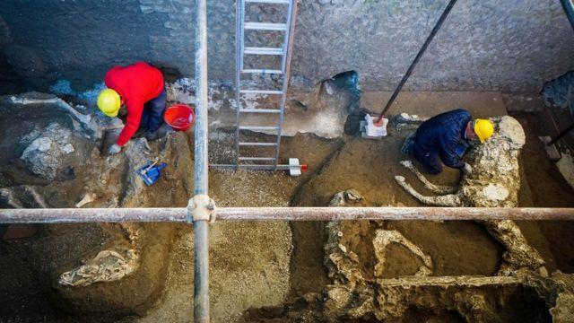 Байыркы Помпей шаары жайгашкан аймактагы археологиялык казуу маалында жылкынын калдыктары табылды.