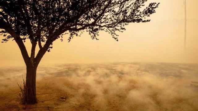 Požari u Kaliforniji, polje se dimi