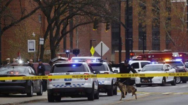 استعانت الشرطة بالكلاب البوليسية