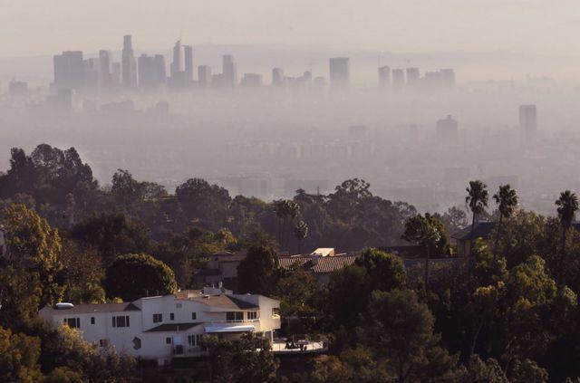 米斯蒂到洛杉磯後,問題就開始了。