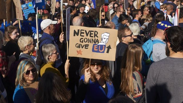 Sign at the People's Vote march