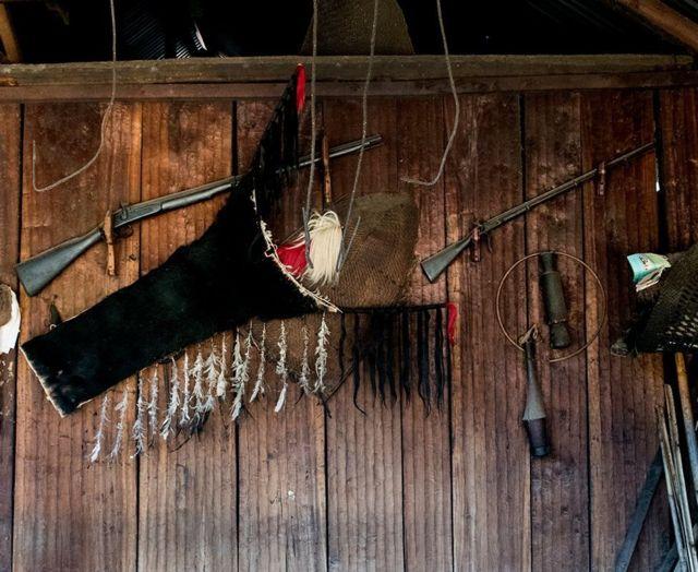 காடுகளை காக்க வேட்டையாடிகள் எடுத்த உன்னத முடிவு