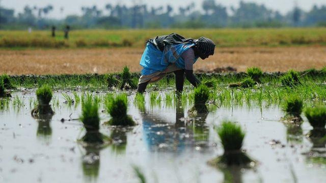 தஞ்சாவூர் நாடாளுமன்ற தொகுதி கடந்து வந்த பாதை Thanjavur