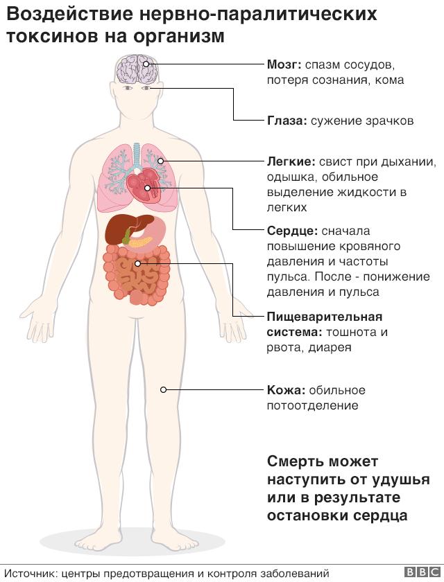 графика - воздействие токсинов на организм