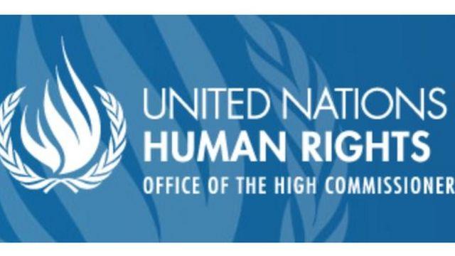 """ماموران ویژه سازمان ملل در بیانیه خود گفته اند که بازداشت احمدرضا جلالی """"خودسرانه"""" بوده و محاکمه وی """"زیر اعتراف اجباری، تحت شکنجه و در دادگاهی غیرمنصفانه"""" و """"به شکل فاحشی ناعادلانه"""" بوده است."""