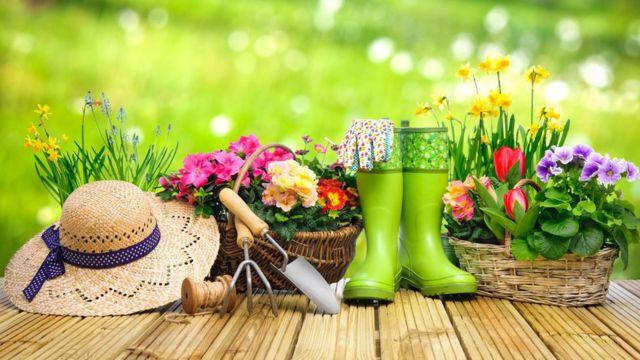 Elementos de jardinería