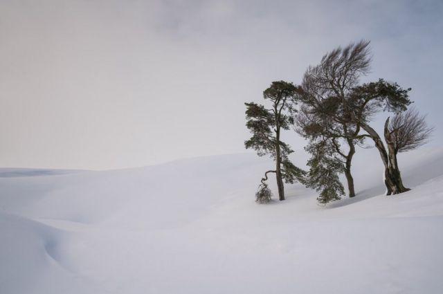 Standing in Snow, Leadhills, South Lanarkshire, Scotland