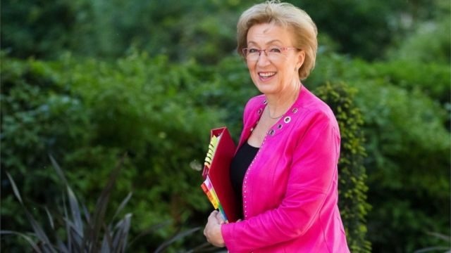 Commons leader Andrea Leadsom quits government over Brexit