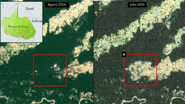 Imágenes satelitales de al pérdida de selva en la región Madre de Dios.