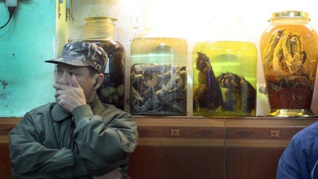 Một nhà hàng bày các lọ rượu ngâm chân gấn, kỳ nhông tại Hà Nội