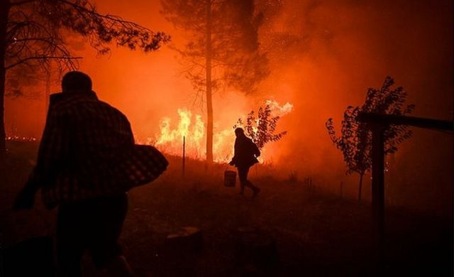 Villagers carry buckets with water to try extinguish a fire that was coming close to their houses at Amendoa in Macao, central Portugal on July 21, 2019.