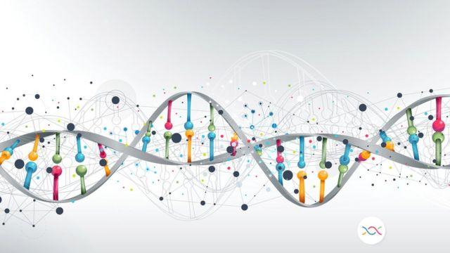 Representação do genoma humano