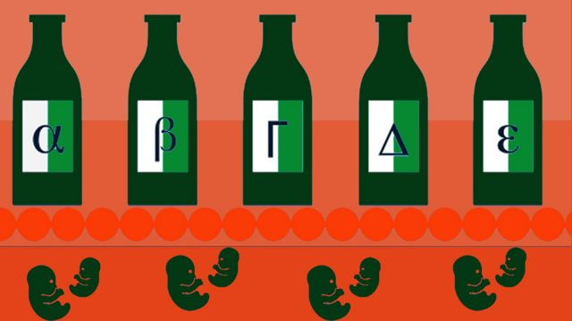 Gráfico con botellas de Alfa, Beta, Gamma, Deltas y Épsilon y fetos