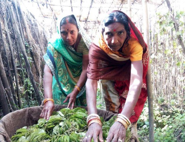 पार्वती और कमला देवी