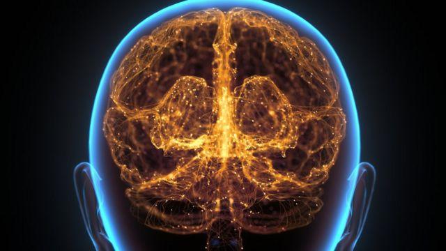 Ilustração artística de um cérebro