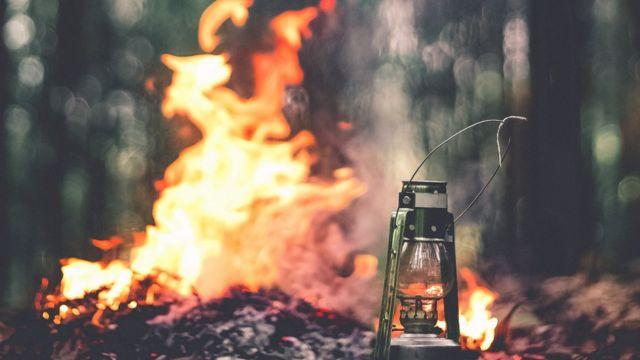 Законодательство Украины запрещает сжигать листья