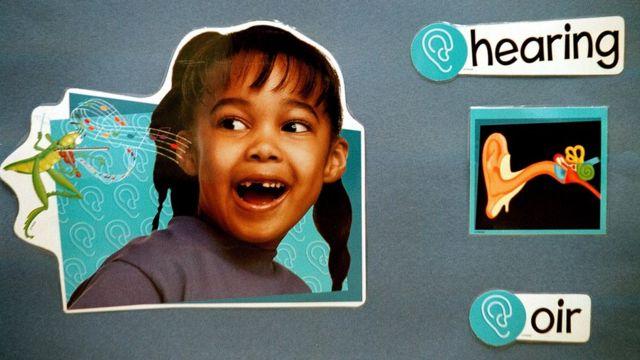 Учебный плакат для первоклассников переводит испанское слово oir на английский язык, и все это сопровождается тематическими картинками. Birdwell Elementary School в Техасе, 11 сентября 2003 года