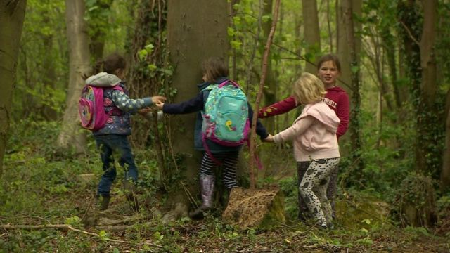 Children playing in woods in Wiltshire