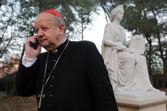 Кардинал Дзивиш
