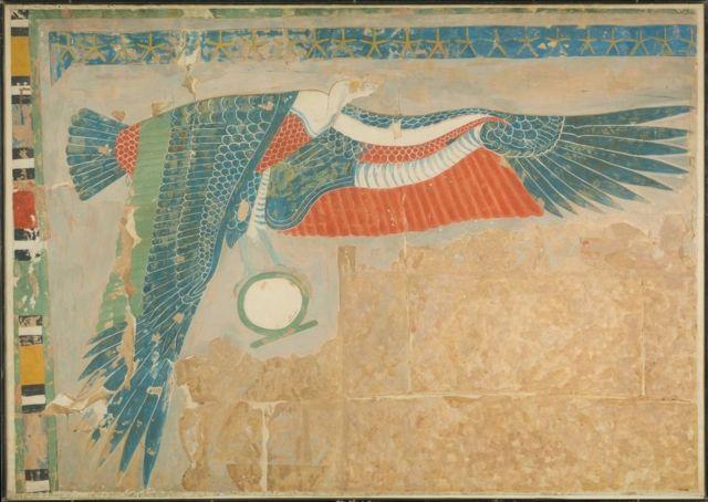 نسر مصري