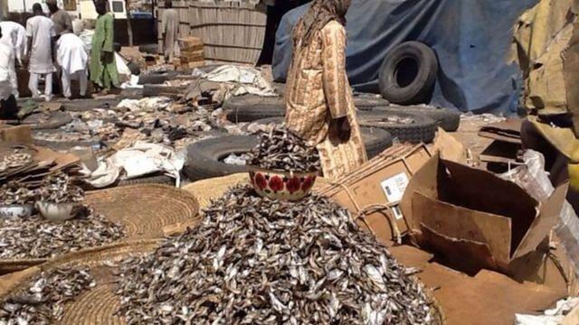 Baga Fish Market