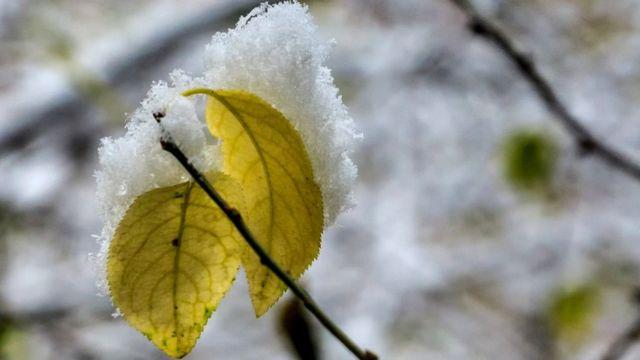 """Цієї осені """"золотим"""" може стати не лише лисття, але й тепло та гаряча вода"""