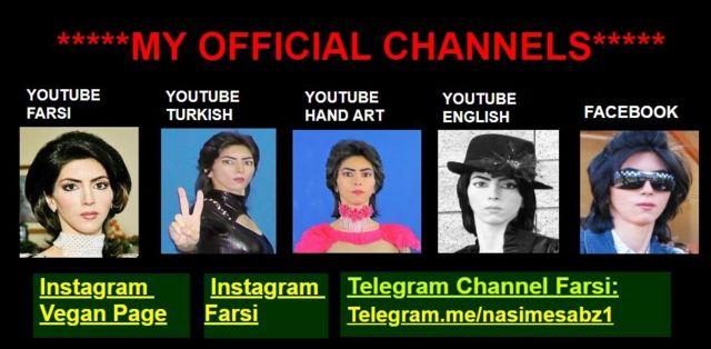 Nasim Aghdam'ın Youtube hesapları