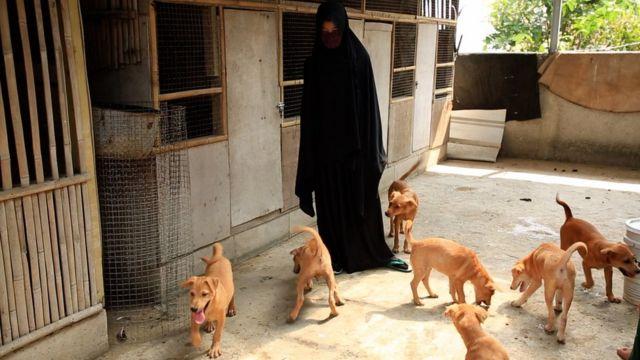 Di rumah Hesti, ada 11 anjing, puluhan kucing, musang, serta ayam.