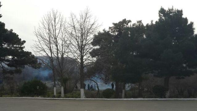yandırılan ağaclar